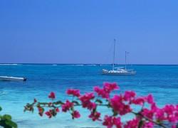 Comment organiser son voyage à l'Île Maurice ?