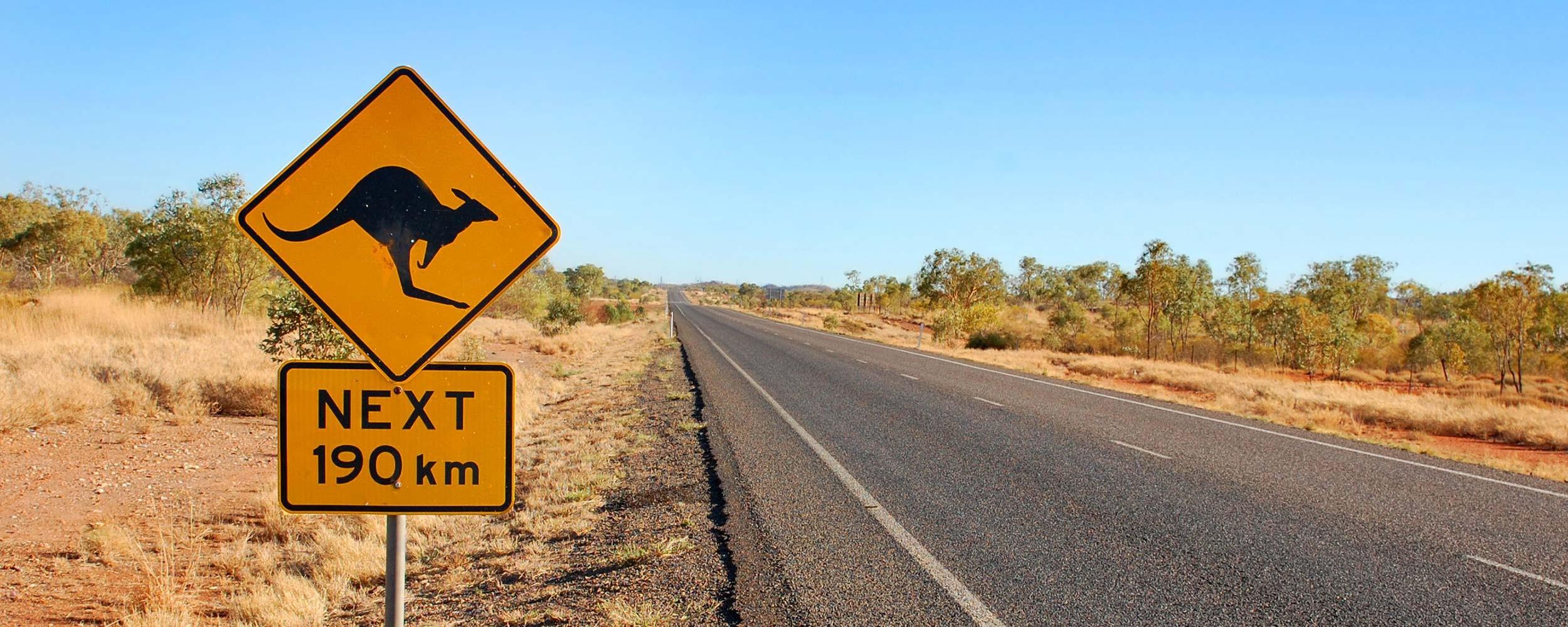 Australie attention kangaroo